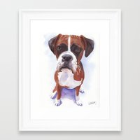 boxer Framed Art Prints featuring Boxer by ArtEndeavors