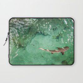 Look at the Shark Laptop Sleeve
