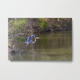 Off to Lunch Metal Print