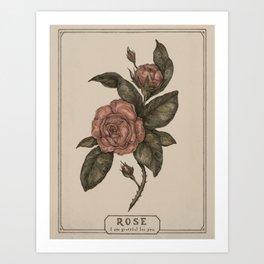 Roses Kunstdrucke