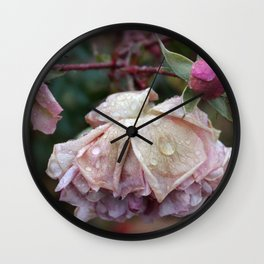 After the frost Wall Clock
