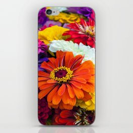 ZINNIA - 180704/1 iPhone Skin