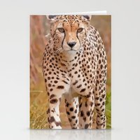 cheetah Stationery Cards featuring Cheetah by Chris Thaxter