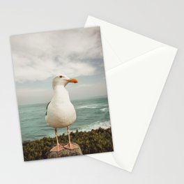 Feathered Resident La Jolla California Stationery Cards