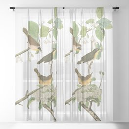 Yellow breasted warbler, Birds of America, Audubon Plate 23 Sheer Curtain