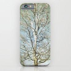 Tree 5 iPhone 6s Slim Case