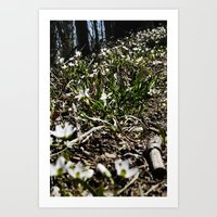 Unexpected Blooming Art Print