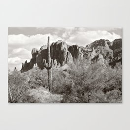 Saguaro in black and white Canvas Print