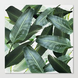 Tropical Palm leaf, banana leaf, greens, Hawaii, retro style Canvas Print