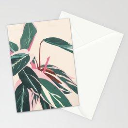 Stromanthe Sanquinea Stationery Cards