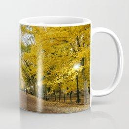 Central Park New York City Coffee Mug
