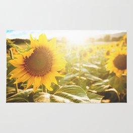sunflower field Rug