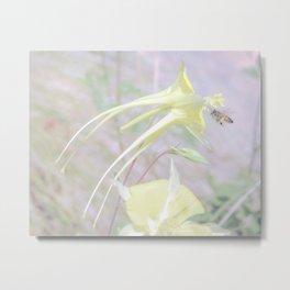 Bee and Columbine Wildflower Art by Murray Bolesta Metal Print