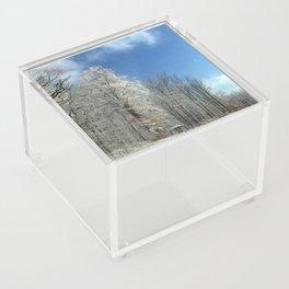 Frosty Winter Morning Acrylic Box