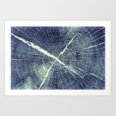 Abstract Bark Art Print