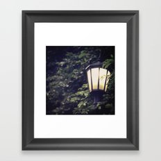 Overgrown Lamp Framed Art Print