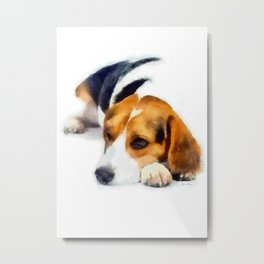 Beagle Bailey Metal Print