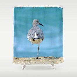 Willet Siesta Shower Curtain