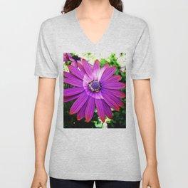 Purple African Daisy Unisex V-Neck
