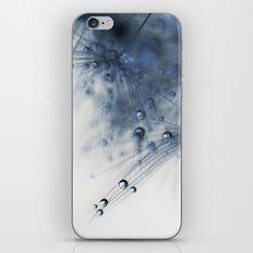 dandelion blue drop iPhone & iPod Skin