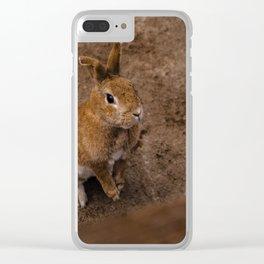 Adorable Bunny Portrait Clear iPhone Case
