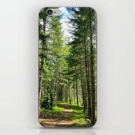Ski Trail iPhone Skin