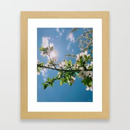 this colors --- love Framed Art Print
