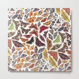 Saturniid Moths of North America Pattern Metal Print