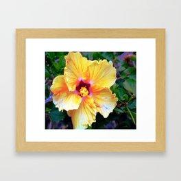 Hibiscus Flower Framed Art Print