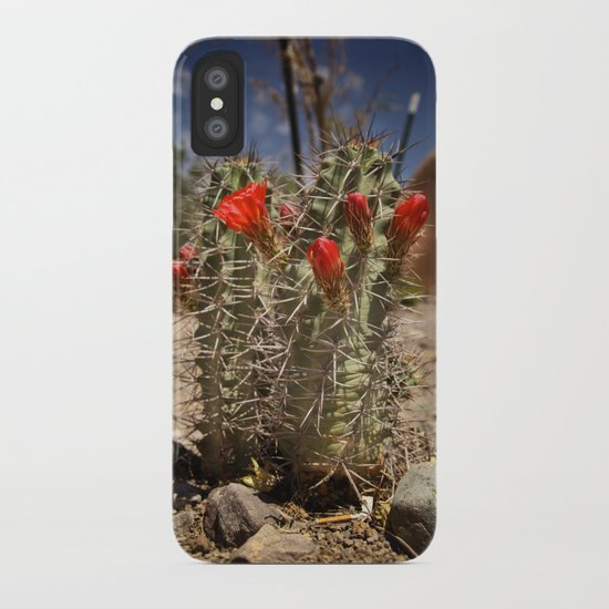 Prickly Beauty iPhone Case
