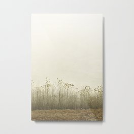 Pale Morning Mood Metal Print