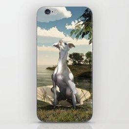 The birth of a greyhound iPhone Skin
