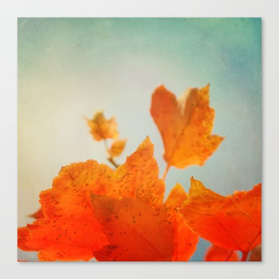Tangerine Dream Canvas Print