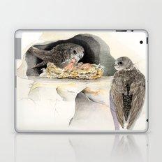 Swift - nesting bird on the Ligurian coast Laptop & iPad Skin