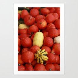 gourds 2 Art Print