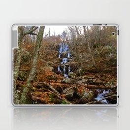 Shenandoah Waterfall II Laptop & iPad Skin