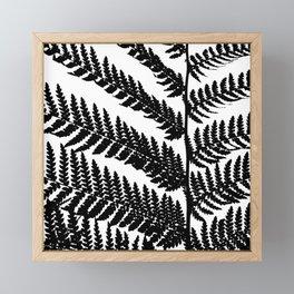 Black And White Plant Artwork Fern Framed Mini Art Print