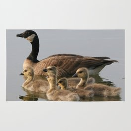 Mother Goose and Her Goslings Rug