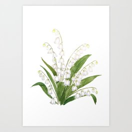 white lily of valley Art Print