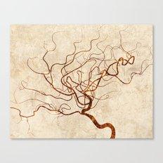 Cerebral in White Canvas Print
