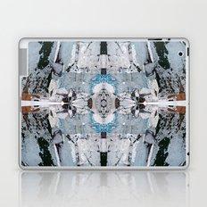 Metria 16 (Symmetria) Laptop & iPad Skin