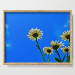 White Daisies Serving Tray