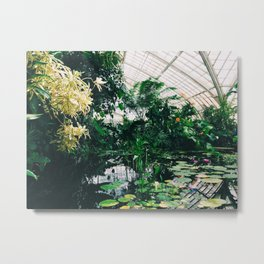 Conservatory of Flowers, San Francisco  Metal Print