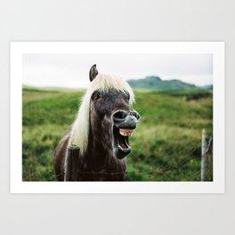 Iceland - Cheer up horse (Leica M3 & Kodak film) Art Print
