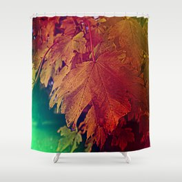 colours of autumn Shower Curtain