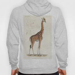 Camelopardis Giraffe - The Giraffe (1837) by Georges Cuvier (1769-1832) an  of a beautiful giraffe a Hoody