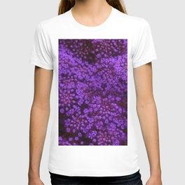 Purple Queen Anne's Lace Landscape T-shirt