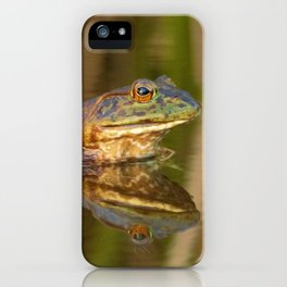 Bullfrog Reflections at Sunset by Reay of Light Photography iPhone Case