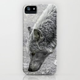 ivory and ebony iPhone Case