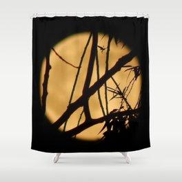 Branches Dance In Full Honey Moon's Light Shower Curtain